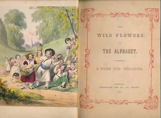 ACKERMANN - The Wild Flowers of the Alphabet