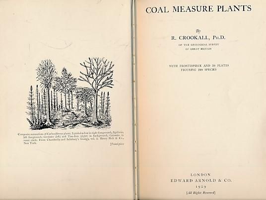 CROOKHALL,  R - Coal Measure Plants
