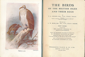 COWARD, T A; THORBURN, ARCHIBALD [ILLUS]; BOYD, A W [REVISED] - The Birds of the British Isles and Their Eggs. The Wayside and Woodland Series. First Series. Comprising the Families Corvidae to Phoenicopteridae
