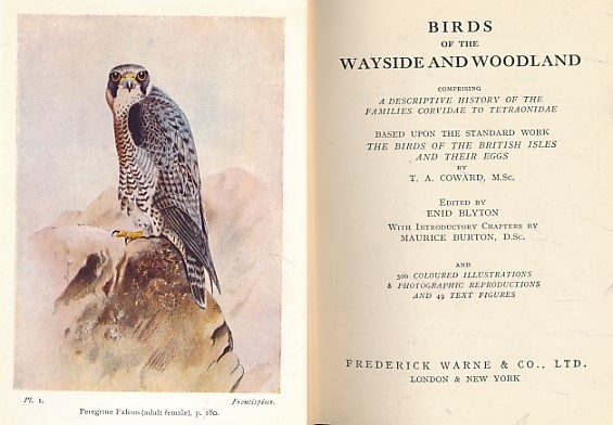 COWARD, T A; BLYTON, ENID [ED.] - Birds of the Wayside and Woodland